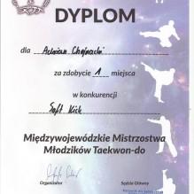 Międzywojewódzkie Mistrzostwa w Taekwondo