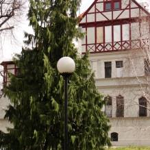 Fotospacer w Parku im. Klepacza